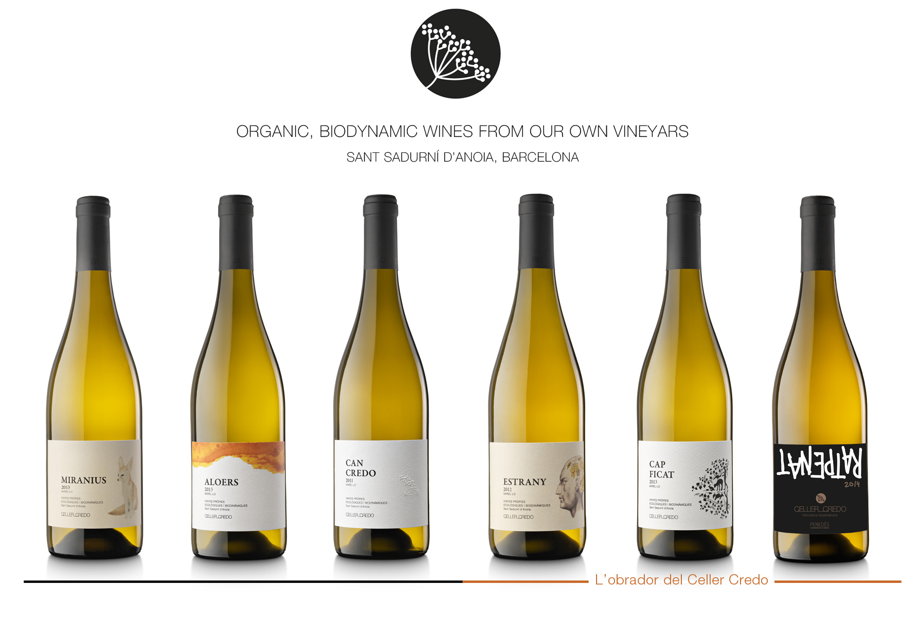 Organic, bioydinamic wines from our own vineyards